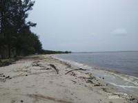 Kombinasi warna hijau cemara, putih pasir, hitam air laut dan langit kelabu.