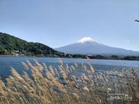 Indahnya pemandangan Gunung Fuji dari Danau Kawaguchiko
