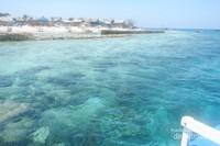 Gelas Kaca: Air yang jernih membuat pemandangan bawah laut Pulau Badi terlihat jelas, cocok untuk snorkeling dan diving