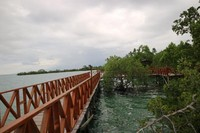Cuaca Mendung dari sisi kiri Pantai Wisata Bakau Kormun