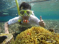 Pemandangan bawah laut pahawang