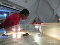 Pengunjung yang sedang mengamati koleksi museum.