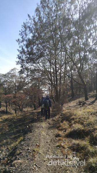 Foto Mendaki Gunung Arjuno Yang Katanya Angker