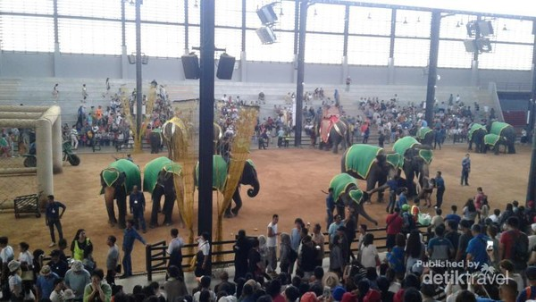 elephant stage in Nong Noch Village
