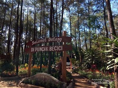 Jejak Barack Obama di Yogyakarta