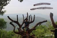 Salah satu spot foto yang terdapat di kebun buah Mangunan.