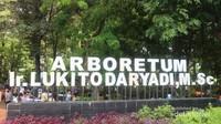 Hutan kota ini bernama Arboretum Ir. Lukito Daryadi, M.Sc