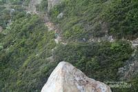 Jalan setapak yang sempit itu merupakan akses utama menuju puncak Gunung Welirang