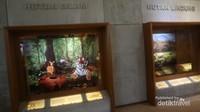 Aneka diorama jenis-jenis hutan yang ada di Indonesia