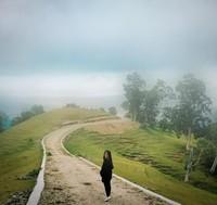 Dingin, hijau dan asri adalah ciri khas Kabupaten Timur Tengah Selatan.