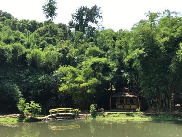 Sebuah Musholla mungil dengan konstruksi serba bambu merupakan salah satu fasilitas untuk memudahkan wisatawan menunaikan kewajiban beribadah.