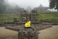 Candi Cetho sarat akan sejarah budaya tetapi juga memiliki pemandangan yang menarik
