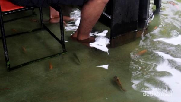 Ikan-ikan kecil yang berenang bebas disekitar kaki pengunjung ketika makan
