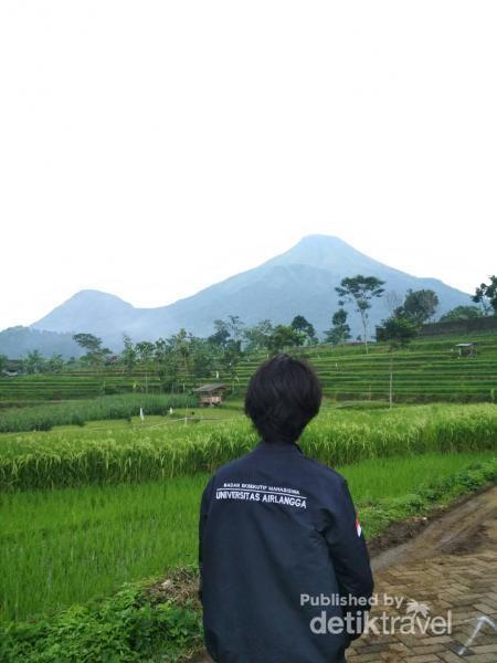 Penampakan Gunung Penanggungan 1653 mdpl via Tamiajeng