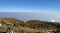 Sabana yang sangat luas di puncak Gunung Penanggungan, di sana terdapat makam dan gua leluhur.