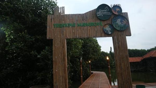 Salah satu jalur trekking mangrove di Kota Semarang terletak di kawasan Grand Maerokoco