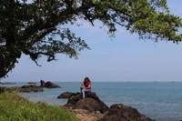 Sepanjang perjalanan menuju Geopark Ciletuh, pengunjung juga bisa menemui berbagai spot foto menarik.