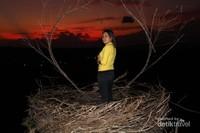 Bukit Cinta Oenali di Kabupaten Timor Tengah Selatan