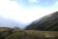 Padang savana adalah salah satu pemandangan ikonik yang akan ditemukan di jalur pendakian Gunung Sumbing