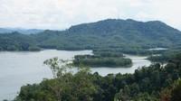 Sebuah pulau kecil di tengah danau