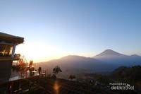 Menikmati panorama padi di dataran tinggi Dieng