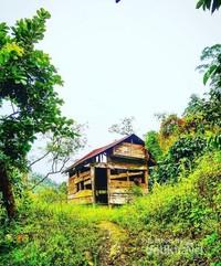 Rumah petani kopi Gayo