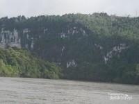 Bukit - bukit karst di kawasan hutan tropis Mahakam Hulu.