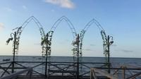 Spot foto yang sangat tepat untuk menikmati mathari terbit ataupun matahari terbenam, dengan melewati jembatan kayu yang berdiri di atas laut.