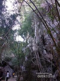 Suasana luar gua.