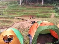 Kemah di sisi Hutan Adat Karang Banten