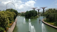 Dragonfly lake di Gardens By The Bay