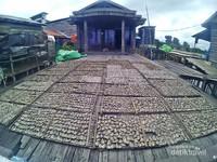 pusat pengolahan ikan asin yang menjadi oleh-oleh khas desa pela