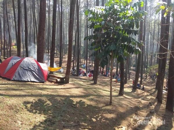 Aea kemah di Wana Wisata Batu Kuda, Bandung cukup luas.