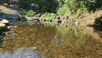 Airnya begitu jernih dan bersih. Tak heran saat hari libur kawasan air terjun Tumpang Dua dipadati pengunjung