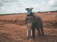 Aris dengan pawang gajah nya