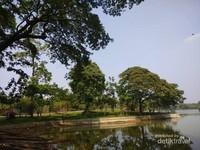 Rindangnya pepohonan di tepian danau.
