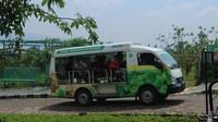 Mobil shuttle yang akan membawa pengunjung ke area kebun buah