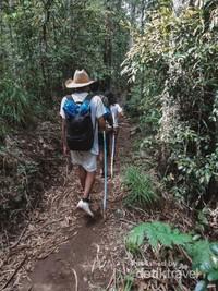 Jalan ke kampung Waerebo