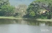 Sebuah danau di Nong Bua Lamphu.
