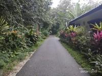 Jalan perkampungan yang sangat bersih.