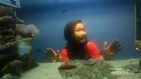 Aquarium yang membuat seakan kita sedang di dalam air
