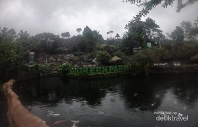Belajar Kreatif di Eco Green Park