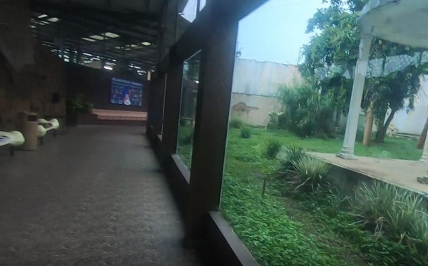 Antara pengunjung dan harimau dibatasi oleh dinding kaca tebal