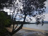 Teduh dan rindang pepohonan di tepian Pantai Pasir Hitam