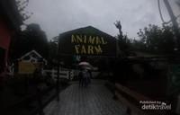 Wisata edukasi bertema peternakan di Animal Farm, Eco Green Park