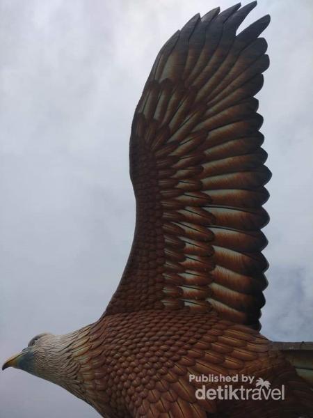 Sayap Elang yang siap terbang kelihatan kokoh.