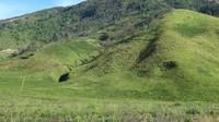 Hamparan bukit yang kehijauan membentang sejauh mata memandang.