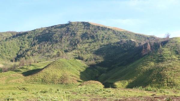 Bukit yang asri tampak lebih indah dari bukit Teletubbies di filnya.
