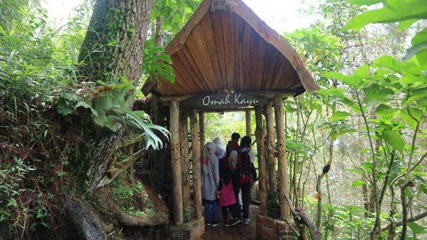 Omah Kayu terletak di kawasan Gunung Banyak
