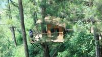 Aslinya, area ini adalah penginapan berbentuk rumah pohon.